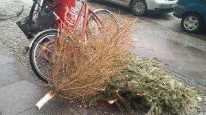 I wonder if this individual removed all the needles of their tree one-by-one.