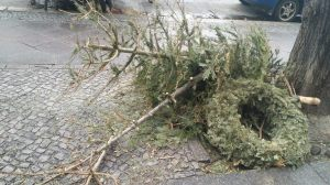 """Nothing says """"January blues"""" more than a pile of sorry-looking Christmas trees."""
