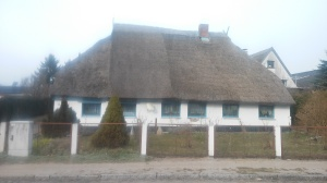 This thatched roof was so impressive I got off my bike to see it.