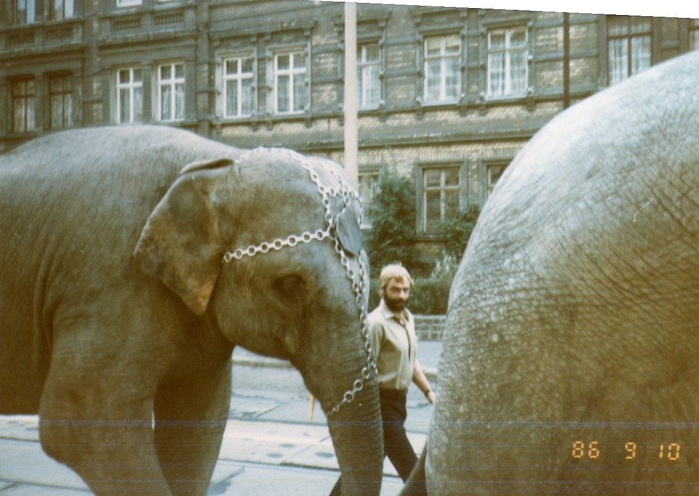 Olaf Schwarz with elephants